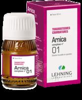 Lehning Arnica Complexe N° 1 Solution Buvable En Gouttes Fl/30ml à FLEURANCE