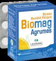 Lehning Biomag Comprimés à Croquer Agrumes B/90 à FLEURANCE