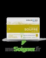 Granions De Soufre 19,5 Mg/2 Ml S Buv 30amp/2ml à FLEURANCE
