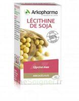 Arkogélules Lécithine de soja Caps Fl/45 à FLEURANCE