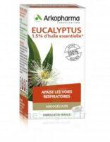 Arkogélules Eucalyptus Gélules Fl/45 à FLEURANCE