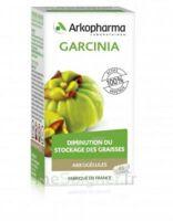 Arkogélules Garcinia Gélules Fl/45 à FLEURANCE