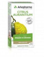 Arkogélules Citrus Aurantium Gélules Fl/45 à FLEURANCE