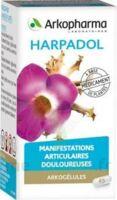 ARKOGELULES HARPAGOPHYTON Gélules Fl/150 à FLEURANCE