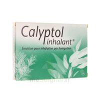 CALYPTOL INHALANT, émulsion pour inhalation par fumigation à FLEURANCE