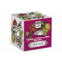 Tisane Fruits Des Bois Bio à FLEURANCE