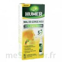 HUMER MAL DE GORGE AIGU à FLEURANCE