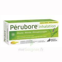 PERUBORE Caps inhalation par vapeur inhalation Plq/15 à FLEURANCE