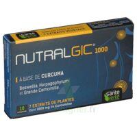 Nutralgic Comprimés Inflammations B/10 à FLEURANCE