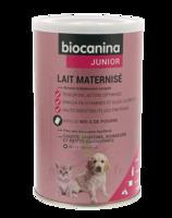 Biocanina Lait poudre maternisé B/400g à FLEURANCE