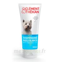 Clément Thékan Shampooing poils blancs T/200ml à FLEURANCE