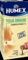 Humex 5 % Solution Buvable Expectorant Sans Sucre Adulte Fl/250ml à FLEURANCE