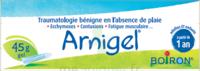 Boiron Arnigel Gel T/45g à FLEURANCE